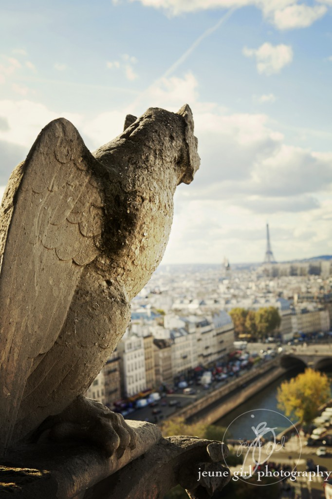 Portrait of bird overlooking city by Jeune Girl