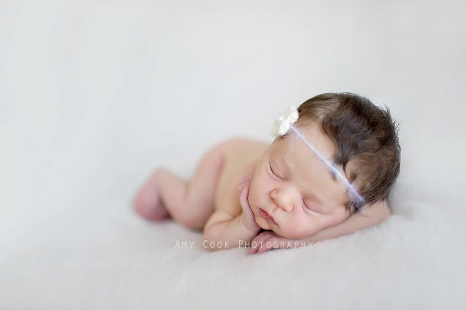 Portrait of newborn by Amy Cook Photography